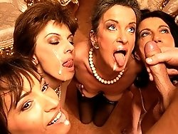 A hot and horny special mature sexparty gets wild